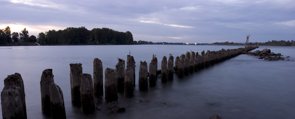 Break water pilings at the confluence of the Columbia River and the Willamette river in Oregon<br/>-- cpsnell, Vancouver, WA
