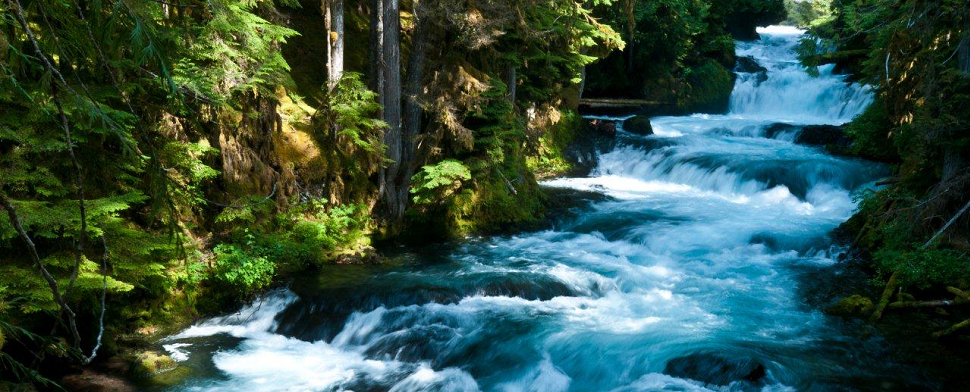 McKenzie River<br/>-- Tony Grover